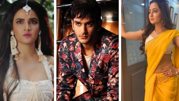 Also Read: Naagin 4: Was Vikas Gupta Responsible For Jasmin Bhasin's Exit? Did He Help Rashami To Bag The Role?