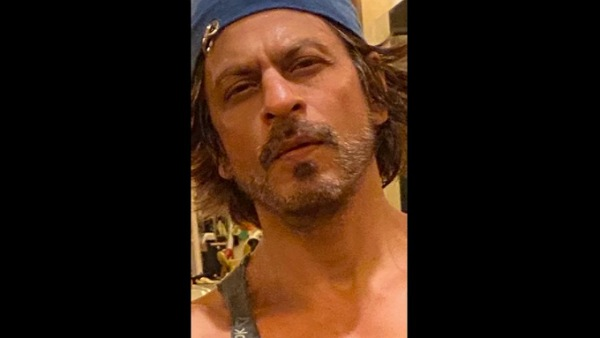 Also Read: Shah Rukh Khan Congratulates His IPL Team KKR For Their 100th Win, Says 'All Were So Good To Watch'