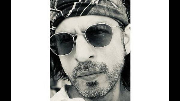 Shah Rukh Khan Extends Warm Wishes For Eid, Says 'Together We Will Conquer All'
