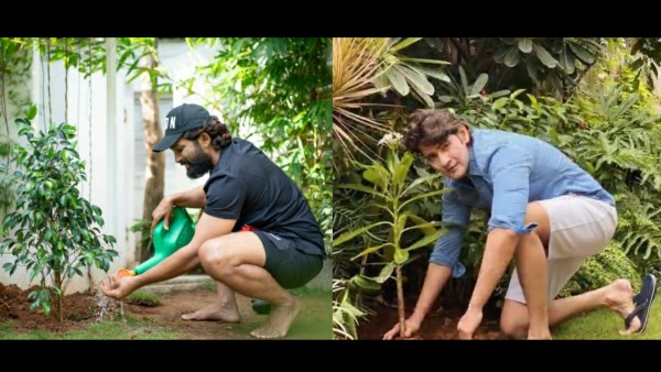 Allu Arjun And Mahesh Babu Send Out Strong Messages On World Environment Day