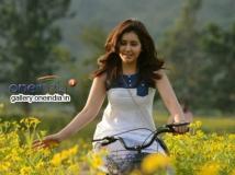 https://www.filmibeat.com/img/2014/07/08-rashi-khanna-romance-gopichand.jpg