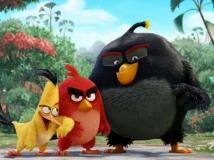 https://www.filmibeat.com/img/2014/10/03-angry-birds-movie.jpg