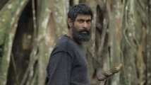 https://www.filmibeat.com/img/2021/03/ranadaggubati-1616729055.jpg