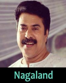 നാഗാലാന്ഡ്
