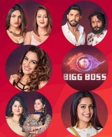 Bigg Boss Season 12: Vote For Your Favourite Contestants