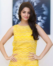 Interesting Photos Of Vedhika