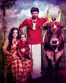 Interesting Photos From Mersal