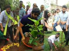PHOTOS: Chiranjeevi, Nagarjuna, Allu Arjun & Other Tollywood Celebs Takes Part In Haritha Haram