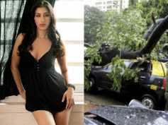 Mumbai Rains! A Tree Falls Right On Sophie Choudry's Car! Read What Other Celebs Have Tweeted