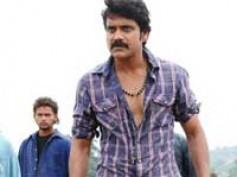 Nagarjuna prefers filmmakers over script