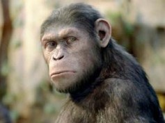 Rise of the Planet of the Apes scores $54 million at Box Office