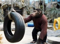 Rise of the Planet of the Apes continue to rule Box Office