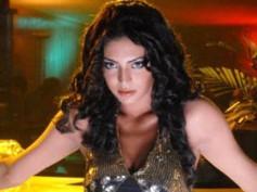 Shweta Bhardwaj to sport bikini for Mahesh Babu's The Businessman!