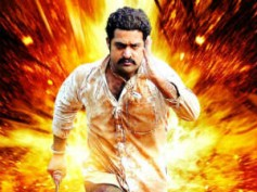 Jr NTR's Dammu collects Rs 14 crs at Box Office on first day