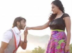Mynaa gets good opening at Box Office
