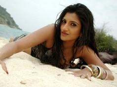 Rishika Singh's obscene video uploading director gets bail
