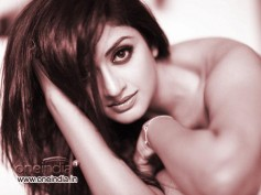 Vimala Raman To Turn Glamorous In B'Town
