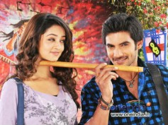 Aadi And I Have Matured As Actors Since Lovely: Shanvi Srivastav