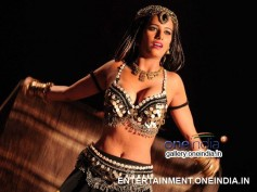 Photos: Latest Stills Of Poonam Pandey From Love Is Poison