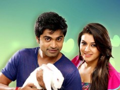 Hansika's Break Up With Simbu Puts Vaalu In Trouble