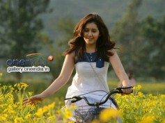Rashi Khanna Set To Romance Gopichand