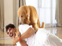 How Dogs Add Entertainment To Akshay Kumar's Life? (See Pics)