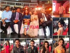 Photos: Chiranjeevi, Rana, Shriya, Pranitha On Red Carpet At SIIMA 2014