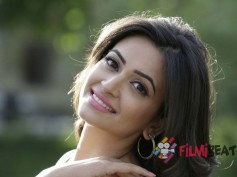 Kriti Kharbanda Very Confident About Belli's Success