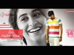Pilla Nuvvu Leni Jeevitham 3 Days Box Office Collection