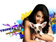 Trisha Says She Will Get Married Under One Condition!