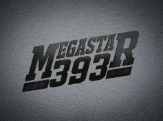 Mammootty's Next Movie: Megastar 393
