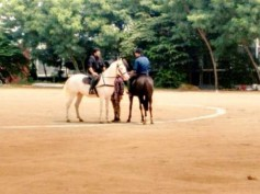 WHOA! Horse Riding Scenes On Chiranjeevi And Ram Charan In Bruce Lee