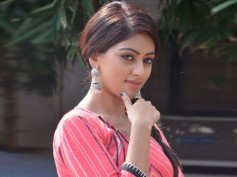 Anu Emmanuel All Set For A Kollywood Debut!