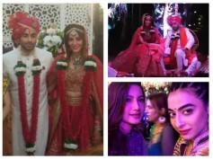 Mandana Karimi-Gaurav Gupta Wedding Bash: Bani, Gauhar, Shahid-Mira & Others Attend (PICS)