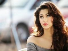 Youth Held For Harassing TV Actress Sonarika Bhadoria!