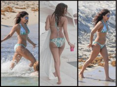 NEW PICTURES! Priyanka Chopra FLAUNTS Her Assets In A Bikini Once Again & It's EYE-POPPING!
