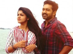 Sunday Holiday Box Office: 20 Days Kerala Collections