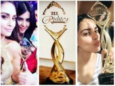 Zee Rishtey Awards 2017: Sriti-Shabbir, Shraddha-Dheeraj, Karanvir Bohra & Others Bag Awards (PICS)