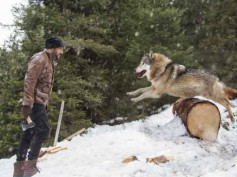 OH-SO-DANGEROUS! Salman Khan Gets Attacked By A Pack Of Wild Wolves