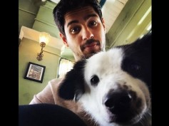 Sidharth Malhotra Urges PM For 'Stronger Penalties' Against Those Who Abuse Animals