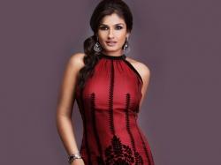 Raveena Tandon Wont Promote Maatr On Arunabh Kumar Tvf