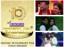 10th Boroplus Gold Awards Divyanka Tripathi Sriti Jha Surbhi Chandna Nakuul Mehta Others Nominated