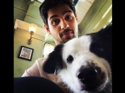 Sidharth Malhotra Urges Pm Stronger Penalties Against Those Who Abuse Animals
