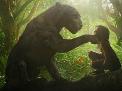 Mowgli The King Of Jungle Twitter Review Receives Mixed Reaction Fans Praise Andy Serkis Direction