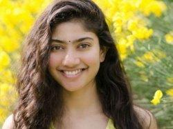 Sai Pallavi Rejects Film Opposite Nandmuri Kalyan Ram Is This Reason