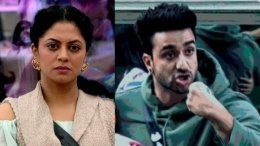 BB 14 Nov 24 Highlights: Aly Nominted, Kavita Breaks Down