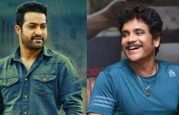BB Telugu 4: Jr NTR To Join Nagarjuna Akkineni In Finale?