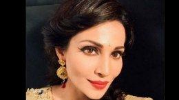 Flora Saini: I Have Never Interacted With Raj Kundra