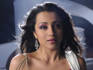 Trisha Stands By Vijay