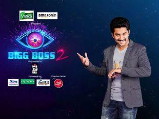 Bigg Boss Telugu Season 2: Contestants List & Biography